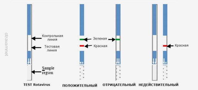 Экспресс-тест на ротавирус: список тестов, проведение и расшифровка