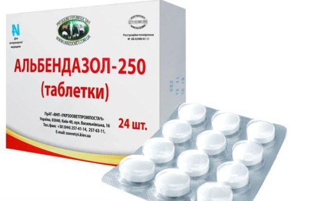 Аскаридоз у детей: симптомы и лечение (питание, препараты)