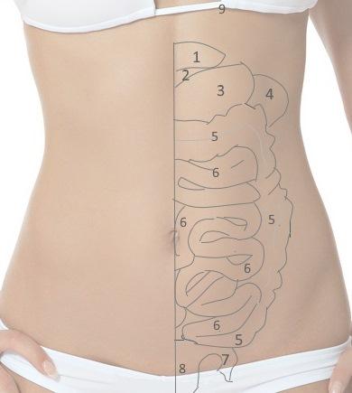 Боль внизу живота (слева, справа, посередине) у женщин: причины и лечение