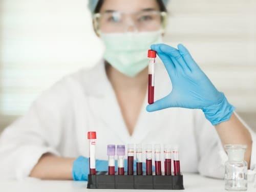 Микробиота кишечника: определение, функции и проверка состояния