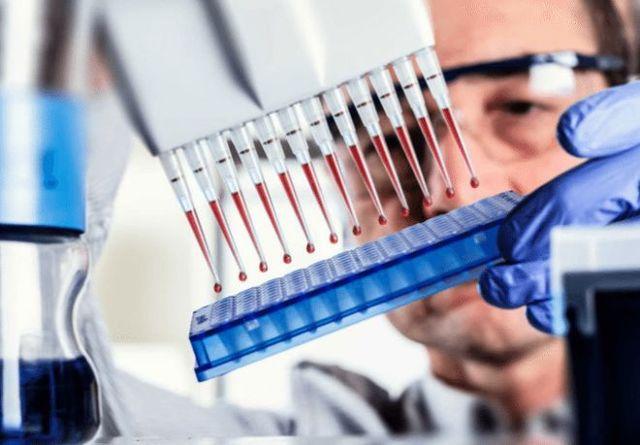 Анализ крови на паразитов: ИФА и другие методы + расшифровка показателей