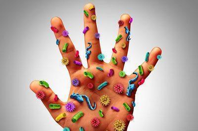 Пищевая токсикоинфекция: возбудители, симптомы и лечение