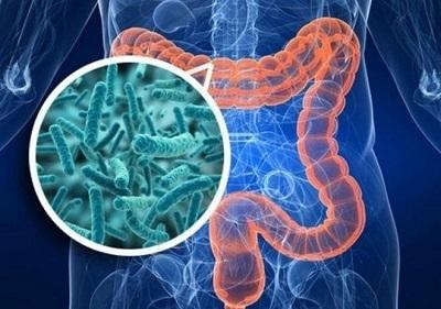 Туберкулез кишечника: симптомы, лечение и прогноз для жизни