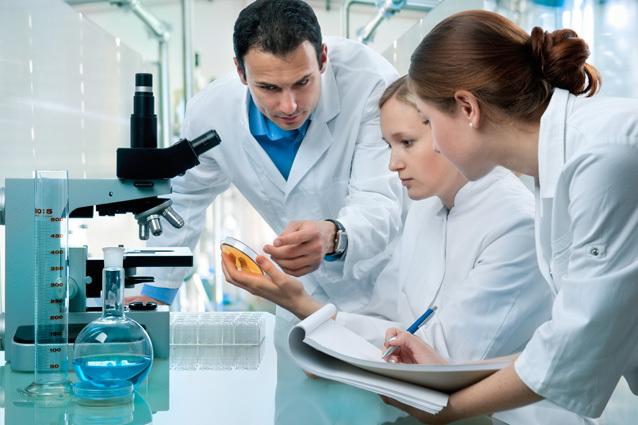Анализ кала на лямблии: суть, подготовка и расшифровка анализа