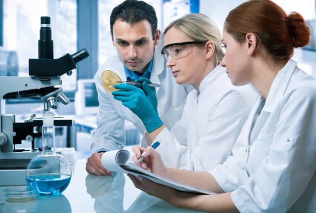 Кровь при дефекации: наиболее частые причины и методы диагностики