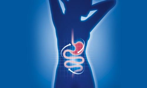 Микрофлора кишечника: понятие, функции, норма и патология