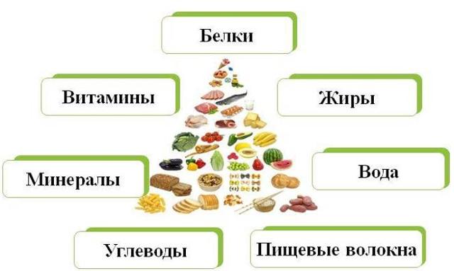Сбалансированное питание – что это за понятие и как питаться сбалансировано?