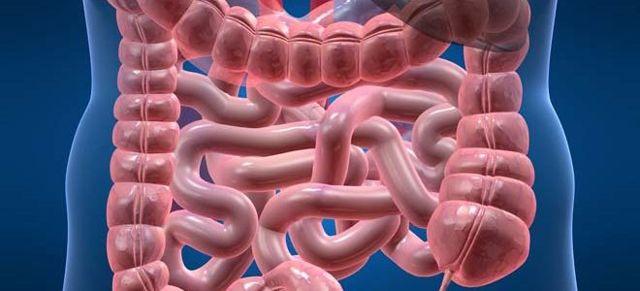 Киста кишечника: симптомы и лечение (питание, препараты, хирургия)