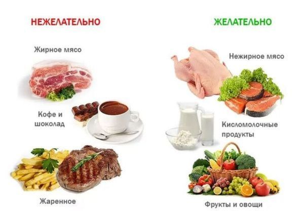 Желчегонные продукты питания при застое желчи: список