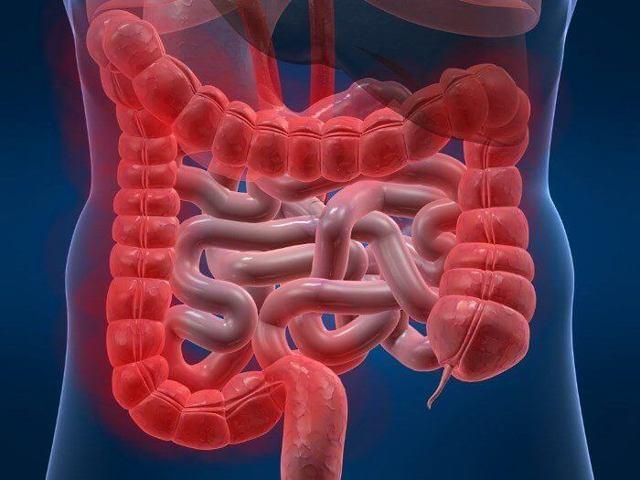 Колоноптоз кишечника: что это за патология, ее симптомы и лечение