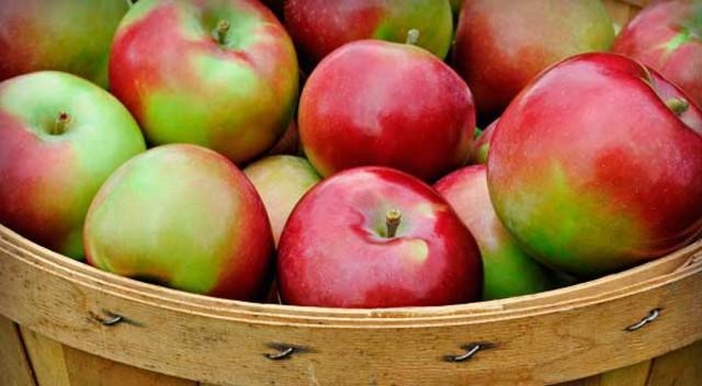 Слабительные продукты при запорах: список хороших и плохих продуктов