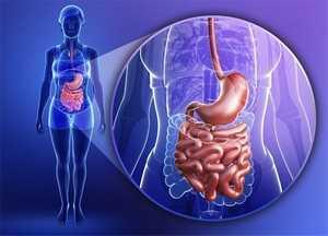 Статьи о перистальтике (моторике) кишечника, ее нарушениях и лечении