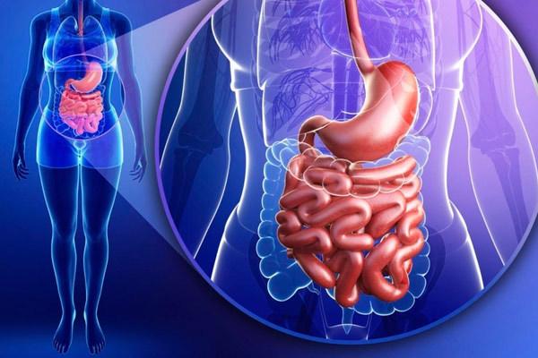 Кишечный амебиаз: симптомы, принципы лечения и прогноз для жизни