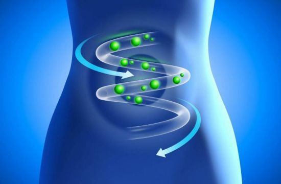 Патогенная микрофлора кишечника: представители, анализ и лечение