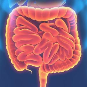Эрозия кишечника: симптомы и лечение (диета, медикаменты, хирургия)